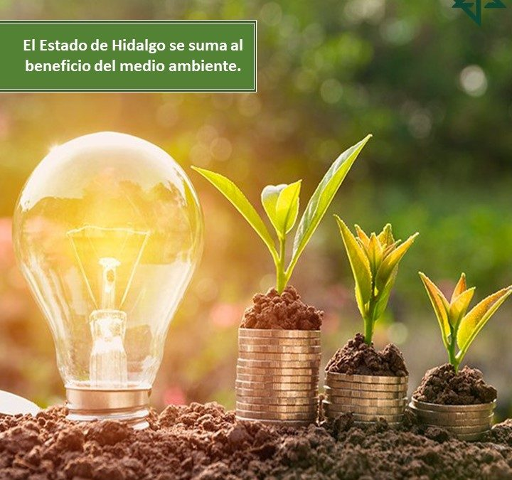 El estado de Hidalgo se suma a los estados que están realizando modificaciones a sus leyes en beneficio del medio ambiente.