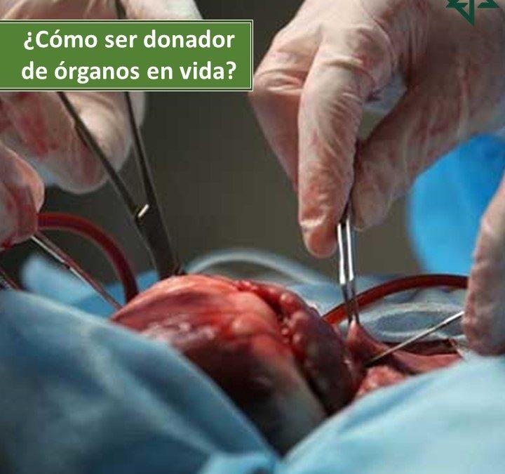 ¿Cómo ser donador de órganos en vida?
