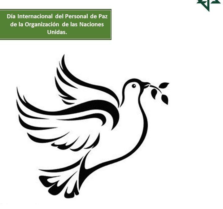Día Internacional del Personal de Paz de la Organización de las Naciones Unidas.